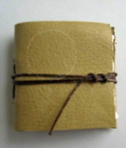 Tiny Leather bound book