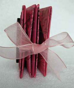 The concertina book ties with an orgaza ribbon