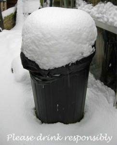 Our bin looking much like a pint of Guinnes hehehe