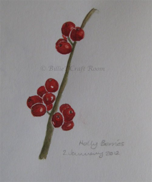 Holly Berries in watercolour 2