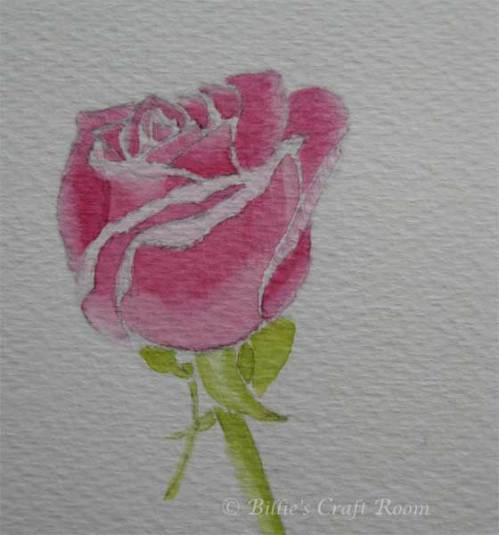 Watercolour Rose 2