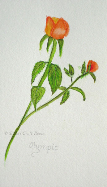 Rose in Derwent; Inktense pencils
