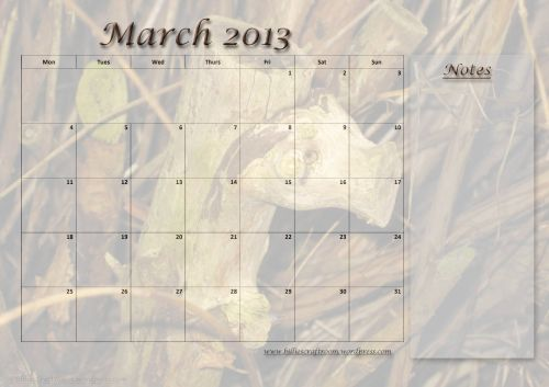 Calendar Page March 2013