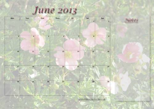 Free download Calendar page June 2013