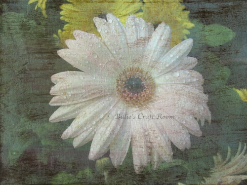 Mixed media digi art. Floral photo meets acrylic painting