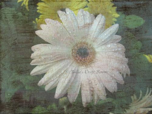 Mixed media digi art. Floral photo meets acrylic painting