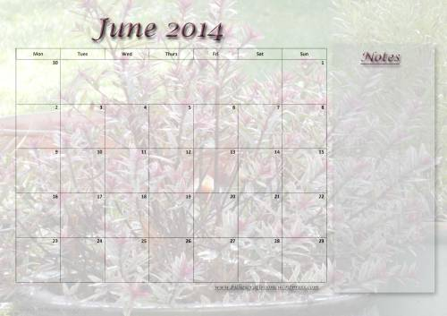 Free download: Calendar Page June 2014