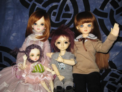 Family picture of the ball jointed dolls I have